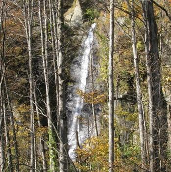 絹糸の滝.jpg