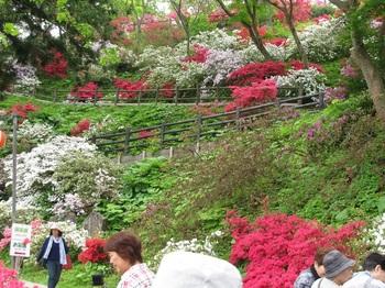 茶臼山2.jpg
