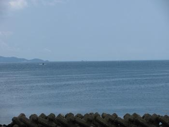 鯛島1.jpg